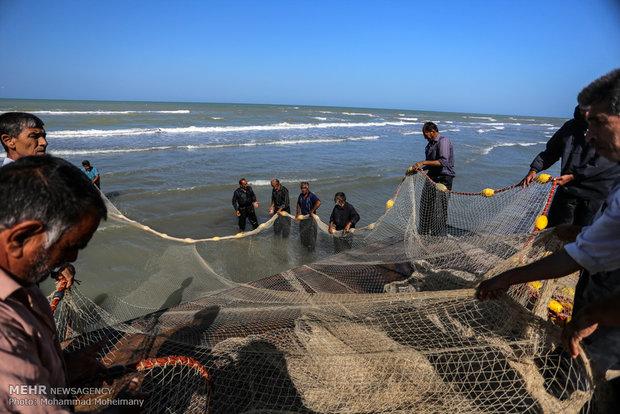 آغاز فصل ماهیگیری دریای خزر