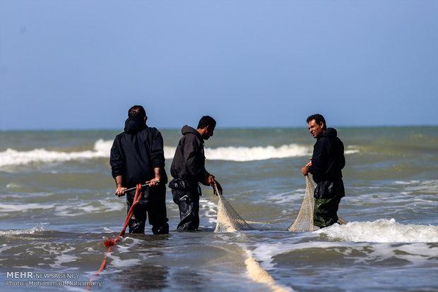 بدء فصل الصيد الموسمي في بحر قزوين
