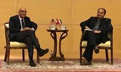 VIDEO: Ex-negotiator discusses post-JCPOA Iran-world ties