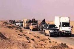 مسؤول عراقي : الحويجة وأيسر الشرقاط مصدر العمليات الارهابية