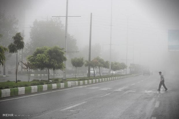 مهگرفتگی و کاهش دید در استان بوشهر از امشب