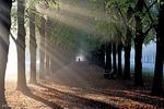برترین تصاویر جهان در ۲۸ مهر ۹۵
