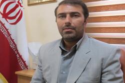 سید فواد حسینی