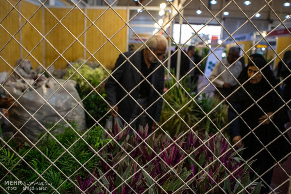 چهارمین نمایشگاه گل و گیاه در قزوین