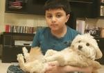 موج پیام تسلیت برای سگ بازیگر ایرانی!