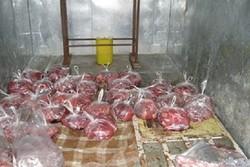 ۶ کیلوگرم گوشت گراز در شهرستان لنگرود کشف و ضبط شد