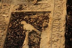 """وثائق """"دار السلام"""" يشارك في مهرجان رشد السينمائي"""