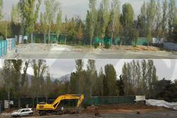 قطع درختان ورزشگاه انقلاب