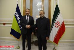 Larijani meets with Bosnian presidential council head