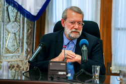 Larijani urges national support for government