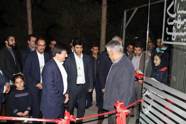 عبدالحمید احمدی رضا شجیع دبیرخانه ورزش
