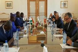 ظريف يبحث ونظيره النيجري تنمية العلاقات الثنائية