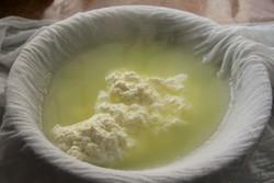 تاثیر پروتئین آب پنیر در کاهش ریسک بیماری قلبی