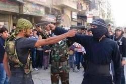 درگیری داخلی تروریستها