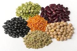مواد خوراکی تقویت کننده انرژی و کاهش خستگی را بشناسید