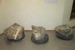 فسیلهایی که از دل خاک روی چرخ ماشین رفتند/ضرورت باستانشناسی فنی