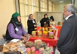 ۷ صندوق اعتباری خرد زنان روستایی در اردبیل تشکیل شد