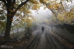 Autumn beauties of Hamedan