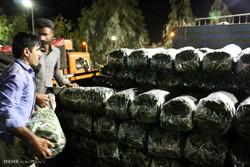 قیمت خیار ۳۰ درصد افزایش یافت/مرکبات به قیمت قبل برگشت