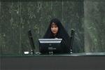 موضع گیری رئیس هیات ایران در بین المجالس در برابر هیات اماراتی