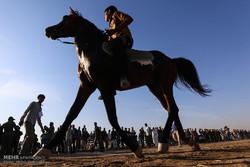 Equestrian race in Susangerd