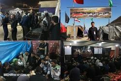 کربلا اربعین بوشهر
