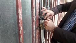 پلمب ۶ واحد عرضه غیر مجاز مرغ زنده در شهرستان دالاهو