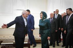 Zarif receives Russian Federation Council head