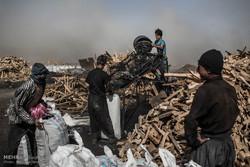 کارگران افغان در کوره تولید ذغال