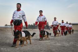مانور سگهای امداد و نجات هلال احمر در اصفهان