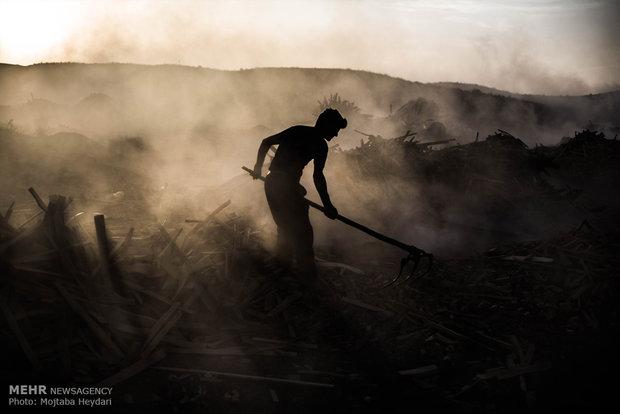 روایت آماری از مهاجرت کارگران/امارات، مقصد اول کارگران مهاجر!