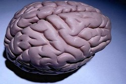 کم آبی بدن به مغز آسیب می رساند