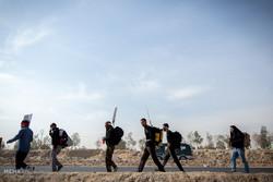 مسيرة الأربعين الحسيني من النجف إلى كربلاء-2 /صور