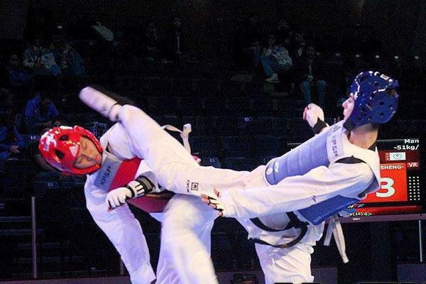Iran's taekwondo squad earns 5 medals