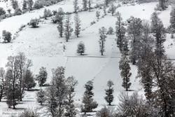 بارش بیش از یک متر برف در ارتفاعات گلستان