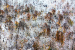 Autumn snow covers Sari mountains
