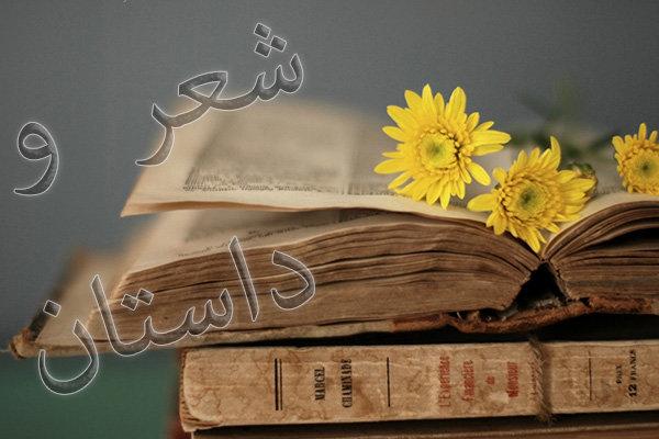 شعر و داستان