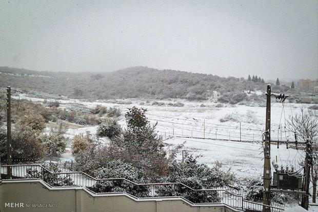 بارش برف پاییزی در گرگان / عکس : میلاد نجاری