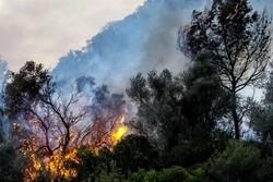 النيران تلتهم فلسطين المحتلّة