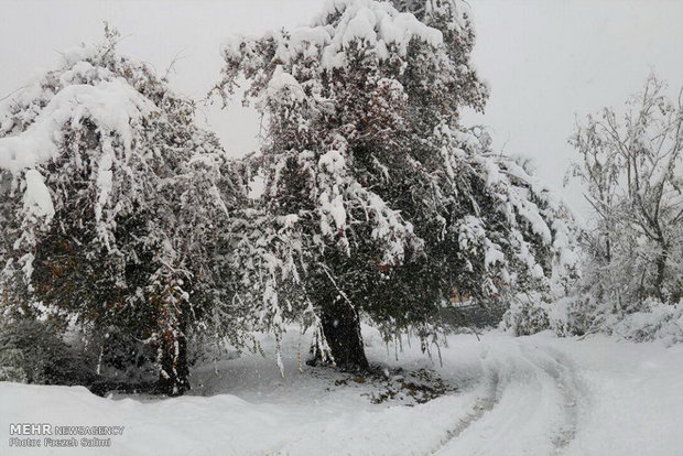 Iran blanketed in snow