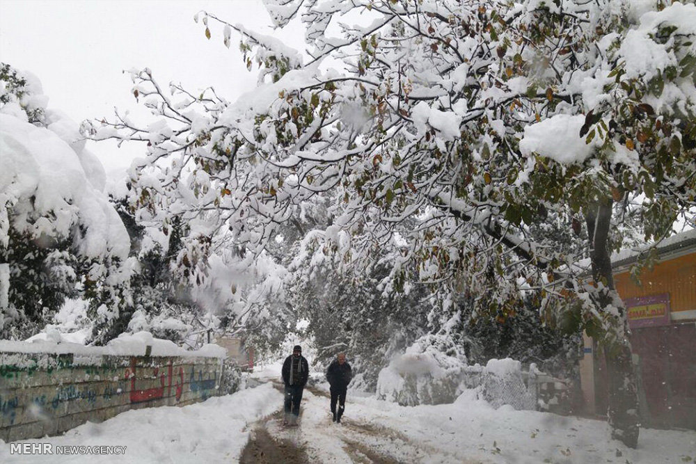 برف بی سابقه در روستاهای بخش چمستان شهرستان نور