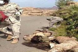 هلاکت نظامیان سعودی