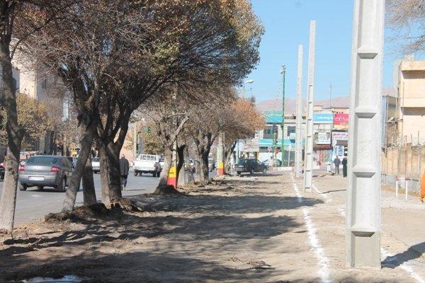 کاشت ۵۰۰ اصله نهال در سطح شهر نهاوند