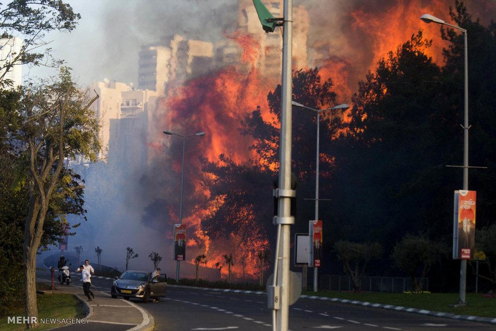 آتش سوزی در سرزمین های اشغالی