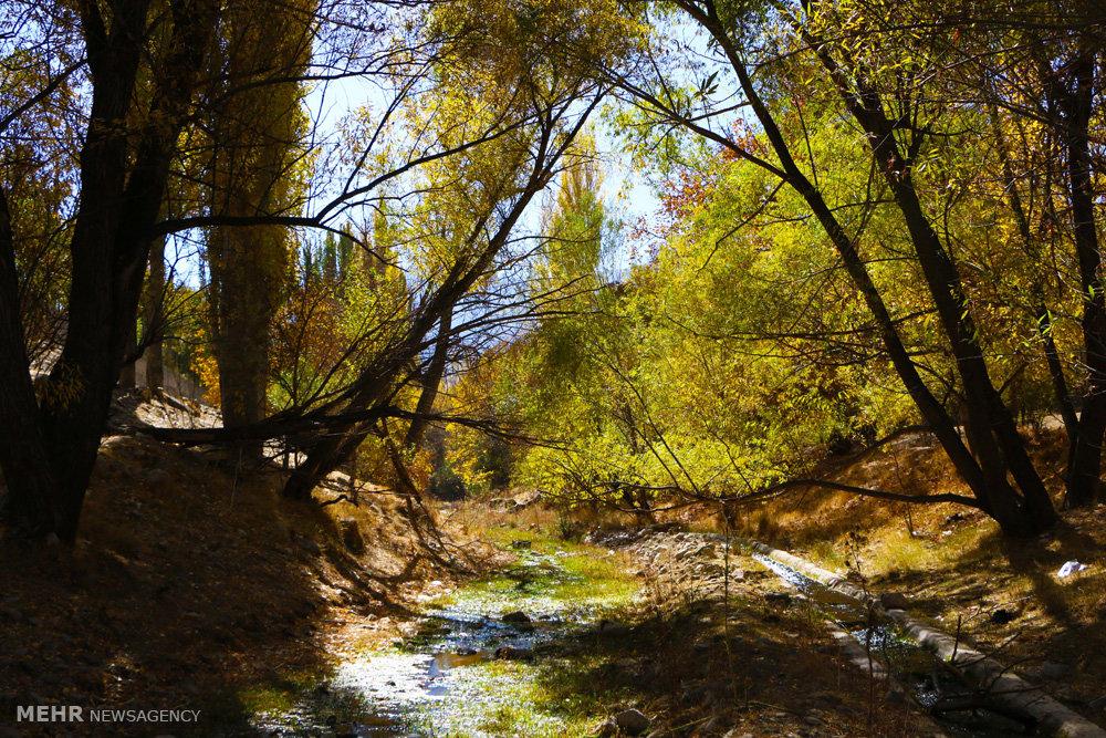 طبیعت پاییزی خوانسار