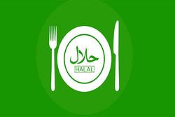 غذای حلال