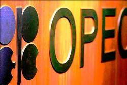 أوبك : ارتفاع معدل إنتاج النفط الإيراني الى 3 ملايين و 814 برميل يوميا في فبراير الماضي