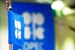 احتمال تمدید توافق کاهش عرضه اوپک/قیمت نفت بالا نمیرود