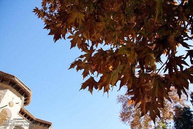 Autumn nature in Shazdeh Garden