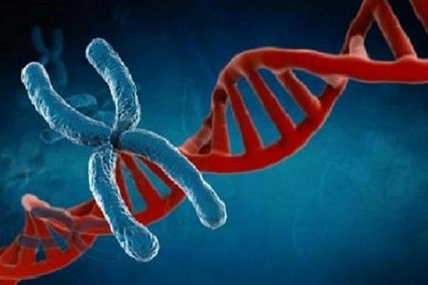 کرۆمۆزۆمی X هۆکاری تووشبوونی پیاوان بە شێرپەنجە